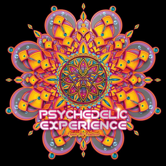 Psy-Experience Festival